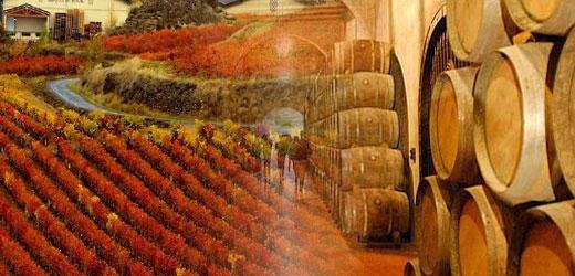 5 razones para viajar a la rioja y descubrir sus vinos