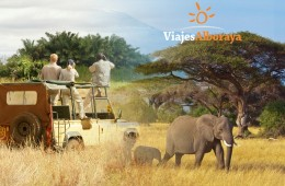 Kenia y safari en 4×4